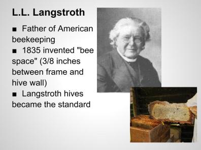 Image result for photo of 19th century bee hives